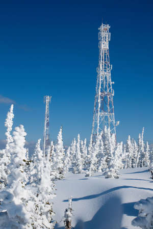 Communication antenn post with frost crystals in cold winter day Stock Photo - 4578450