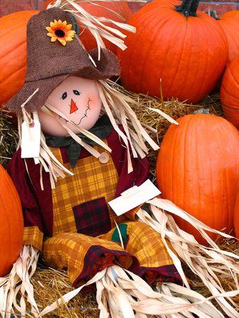 Scarecrow among some pumpkins Stock Photo - 310383