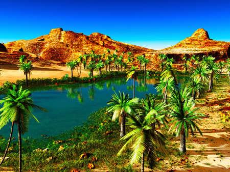 plantas del desierto: África oasis - hermoso paisaje natural Foto de archivo
