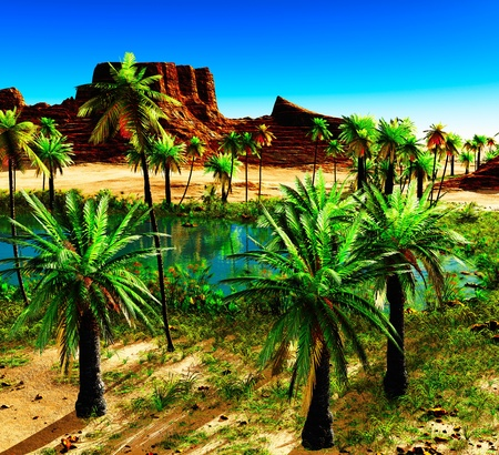 African oasis - beautiful natural  landscape photo