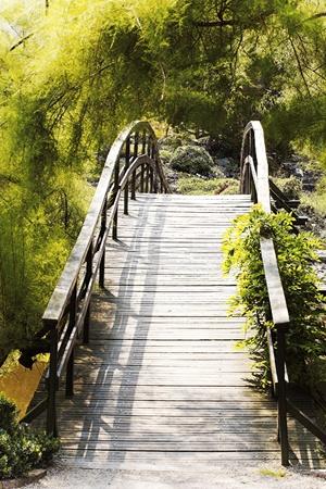 japanese bridge: Japanese bridge over the water Stock Photo