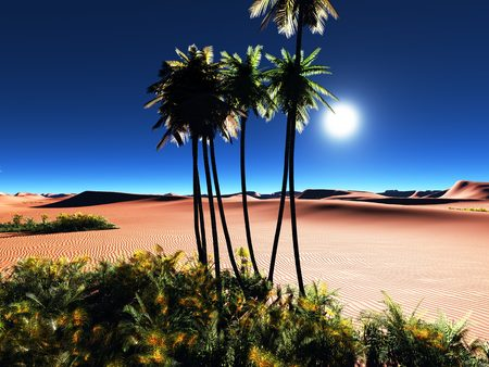 Beautiful natural background -African oasis photo