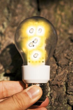 Light bulb held in human palm photo