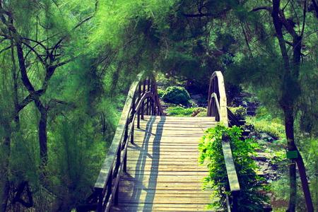 japanese bridge: Traditional japanese bridge in Japanese garden - cross-processed