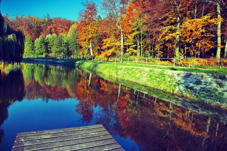 meditative: Fall time in park with pond (cross-processed) Stock Photo