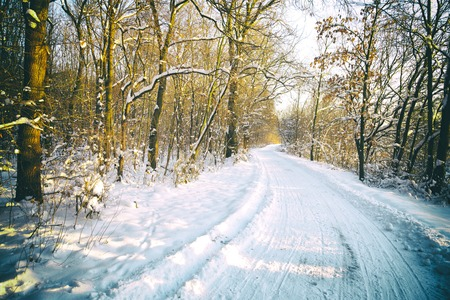 dolnoslaskie: Wintry landscape in Southern Poland