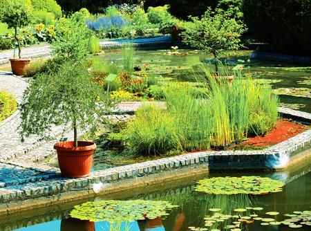 Awaesome botanical garden in sunshine photo