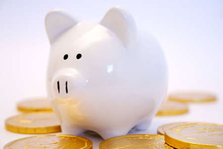 monies: Piggy bank and gold coins