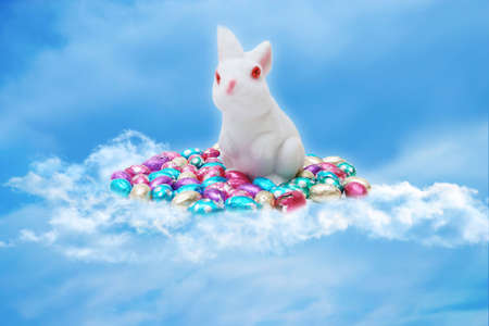 easter bunny and eggs on a cloud