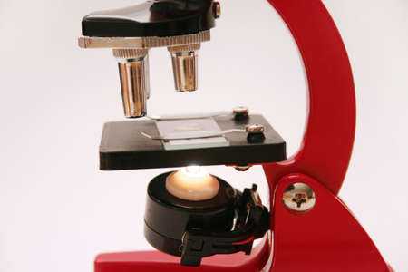 Microscope with slide