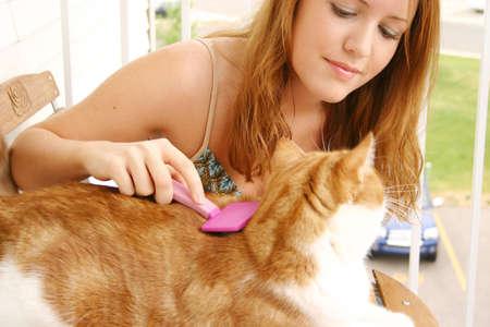 cat grooming: Woman grooming cat