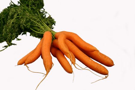 Bunch of carrots, isolated