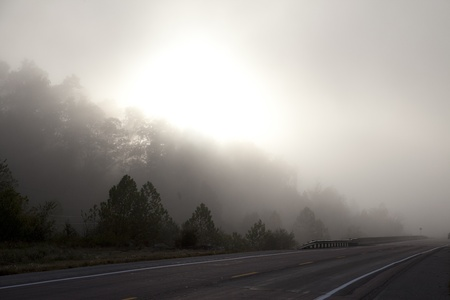 A road stretching into the fog. photo