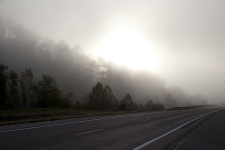 A road stretching into the fog.