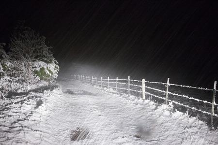 one lane: A one lane road on a dark snowy night.