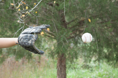 guante de beisbol: La captura de una pelota de b�isbol con un guante de b�isbol. Foto de archivo