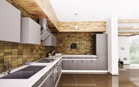 Modern kitchen with sink,gas stove and hood interior 3d photo