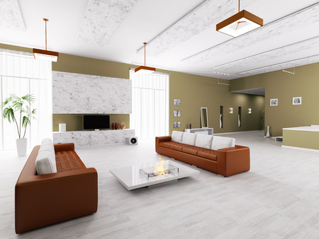 Interior of modern apartment living room hall  photo