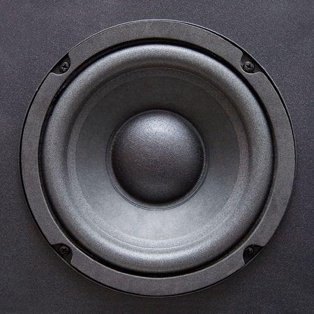 Speaker close-up