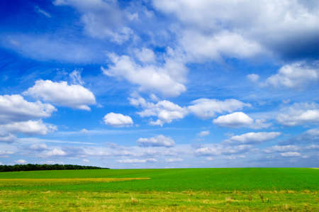 The green field. Stock Photo - 847357