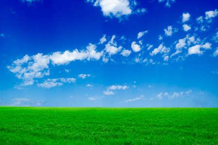 El campo y el cielo azul.