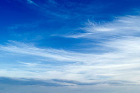 blue sky: White clouds in the blue sky. Cloudscape