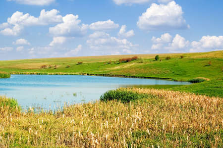 Lake, bulrush, blue sky, clouds. photo