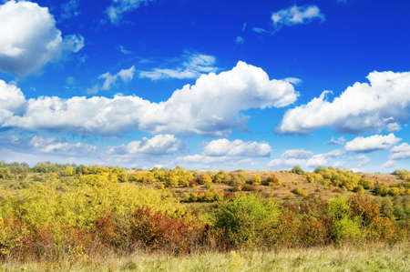 Autumn garden on background blue sky Stock Photo - 2037573