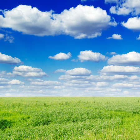 green field and white clouds  Stock Photo - 2751445