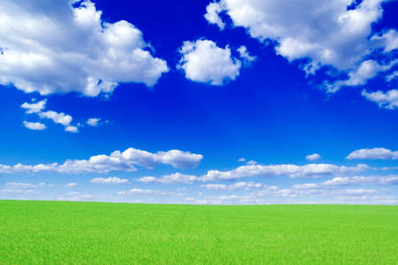 whitel clouds and green spring field  photo