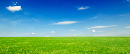 spring field and clouds Stock Photo - 2993066