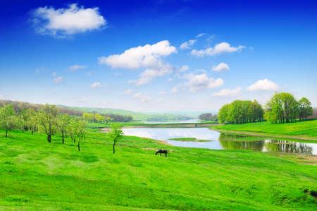 Small lake and green meadows photo
