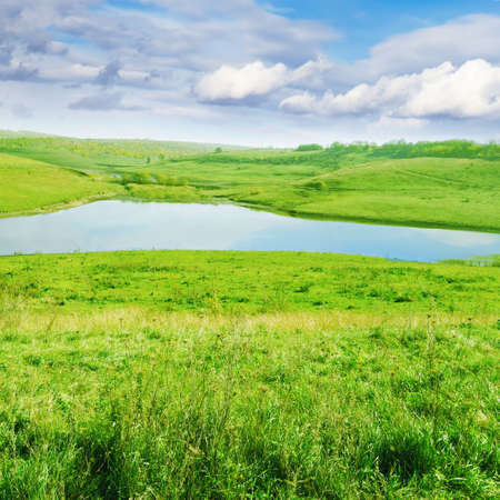 herbage: Small lake and green meadows