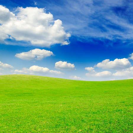 green meadow Stock Photo - 3061107