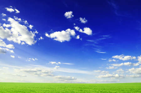 green field, blue sky, white clouds                                    photo