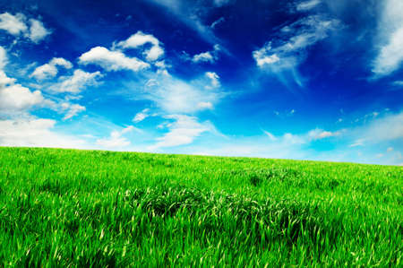 white beautiful clouds and a green field  Stock Photo - 3218379