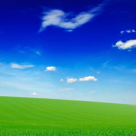 field covered by a grass Stock Photo - 3273372