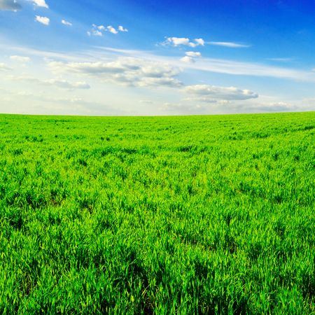 white clouds and a green field Stock Photo - 3327674