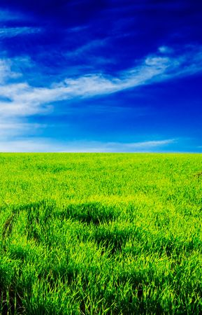 green field, blue sky, white clouds Stock Photo - 3327669