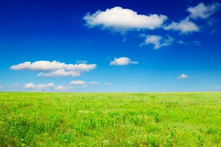 lea: green field and beautiful clouds