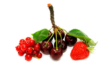 fruits isolated on a white background                                     photo