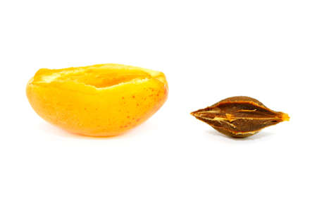 pit fall: apricot isolated on a white background