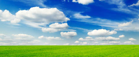 lea: green field, blue sky and white clouds                                     Stock Photo