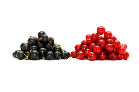 bacca: red currant and  blackcurrant isolated on a white background