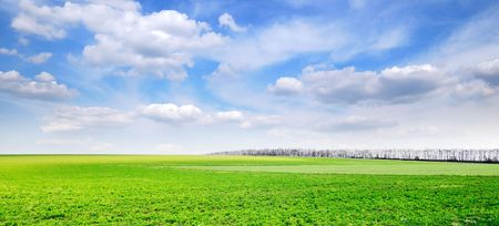field and sky Stock Photo - 3795306
