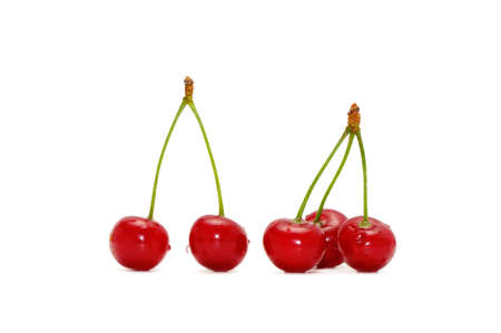 cherries isolated: cherries isolated on a white background       Stock Photo