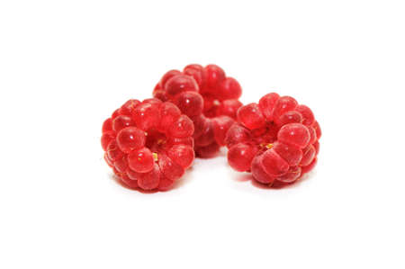 raspberry isolated on a white background    photo