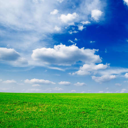 lea: meadow