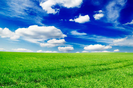 field and sky Stock Photo - 4955223