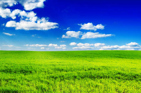 field and sky Stock Photo - 4983330